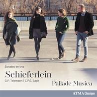 Schieferlein